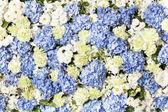 Flower wedding decoration — Stock Photo