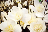 Beautifu artificial flowers — Stock Photo
