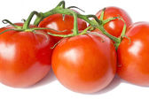 Branch with red tomatoes — Stock Photo