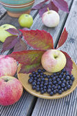 Apples and berries in a bowl on the table — Stock Photo