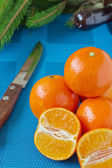 Tangerines on a blue tablecloth — Stock Photo