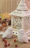 Christmas lantern and birds — Stock Photo