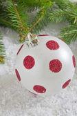 Beautiful christmas the ball — Stock Photo