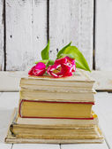 Tulips on the books — Stock Photo