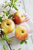 Pomme mûre et la direction générale de la floraison — Photo