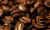 Coffee. Background texture. Close-up. — Foto Stock
