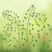 Blindweed flowers. — Stock Vector