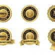 Money back guarantee badge and  label set — 图库矢量图片