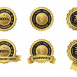 Money back guarantee badge and label set — Stock Vector #29692557