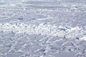 Ice covered sea — Stock Photo