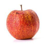 Vieux apple — Photo