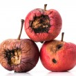 Stock Photo: Three rotting apples