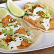 Two Fish Tacos — Stock Photo #29505081