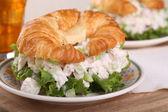 Chicken Salad Sandwich — Stock Photo