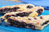 Blueberry Turnovers Closeup — Stock Photo