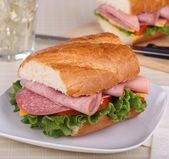 Cold Cut Sandwich — Stock Photo
