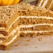 Sliced Pumpkin Cake — Stock Photo #30630669