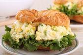 Egg Salad Sandwich Closeup — Stock Photo