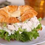 Chicken Salad Sandwich Closeup — Stock Photo #30857425