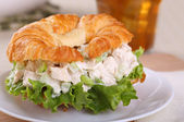 Chicken Salad Sandwich Closeup — Stock Photo