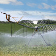 Irrigating Farm Field — Stock Photo
