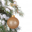 Gold Christmas Ball — 图库照片