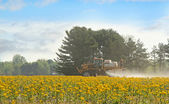 Spraying Agricultural Chemical — Stock fotografie