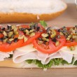 Turkey Sub — Stock Photo