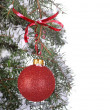 Stock Photo: Hanging Christmas Ball