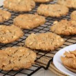 Cooling Peanut Butter Cookies — Stock Photo