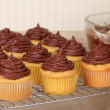 Cup Cakes Cooling — Stock Photo #32804127