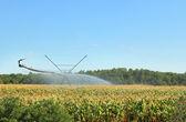 Irrigation Equipment — Stock Photo