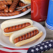 Holiday Picnic Hot Dogs — Stock Photo