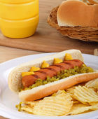 Hot Dog on a Bun — Stock Photo