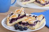 Blueberry Bar Dessert — Stok fotoğraf
