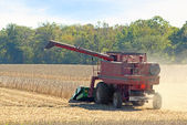 Harvesting Soybeans — Stock Photo