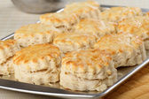 Baked Biscuits — Stock Photo