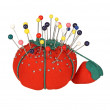 Stock Photo: Red Pincushion