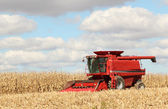 Red Combine — Stock Photo