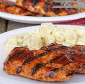 Grilled Chicken Meal — Stock Photo