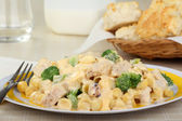 Creamy Chicken and Macaroni — Stock Photo