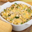 Chicken and Noodle Casserole — Stock Photo #38000047