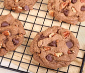 Cooling Chocolate Chip and Pecan Cookies — Stockfoto