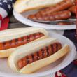 Gegrilde hotdogs — Stockfoto #40521439