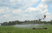 Irrigating a Soybean Field — Stock Photo