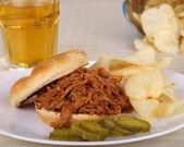 Pulled Pork Sandwich — Stock Photo