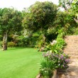 Natural stone landscaping in home garden with stairs — Foto de stock #29531061