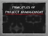 Yazı tahtası üzerinde proje yönetimi prensipleri — Stok fotoğraf