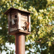 Stock Photo: Bird feeders. tree house for birds feeding her yound ones