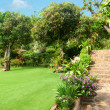 Natural stone landscaping in home garden with stairs — Stock Photo